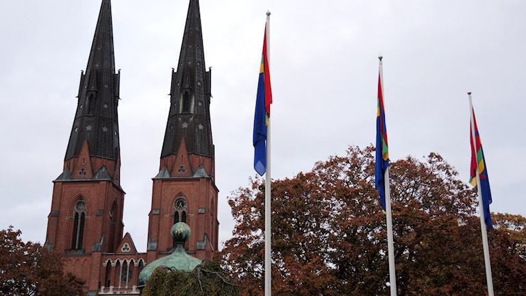 Samiska flaggor framför Uppsala domkyrka. Foto: Sameradion & SVT Sápmi