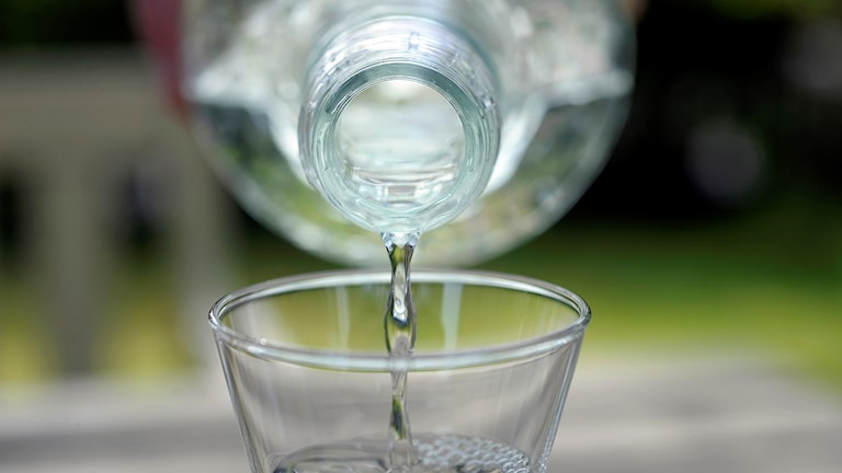 Sprit hälls i ett nubbeglas. Foto: Fredrik Sandberg / TT
