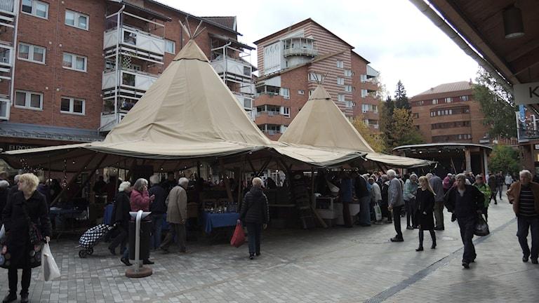 Stora tältkåtor i Huddinge. Foto: Sameradion & SVT Sápmi