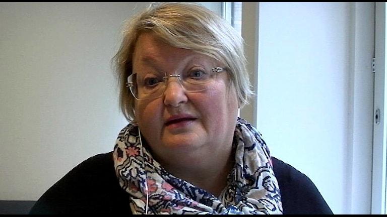 Sameskolstyrelsen chef, AnnChatrin Brandén menar att man behövde satsningen. FOTO: SVT