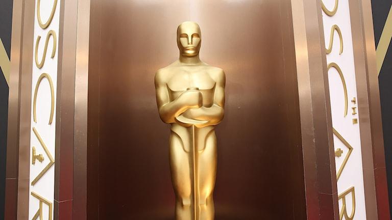 Oscarsstatyett. Foto: Matt Sayles/AP/TT