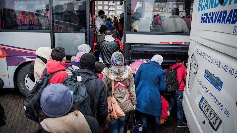 Flyktingar: Foto: Marcus Ericsson / TT