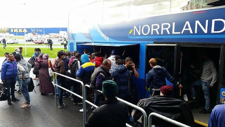 Flyktingar på väg till Finland. Foto: SVT