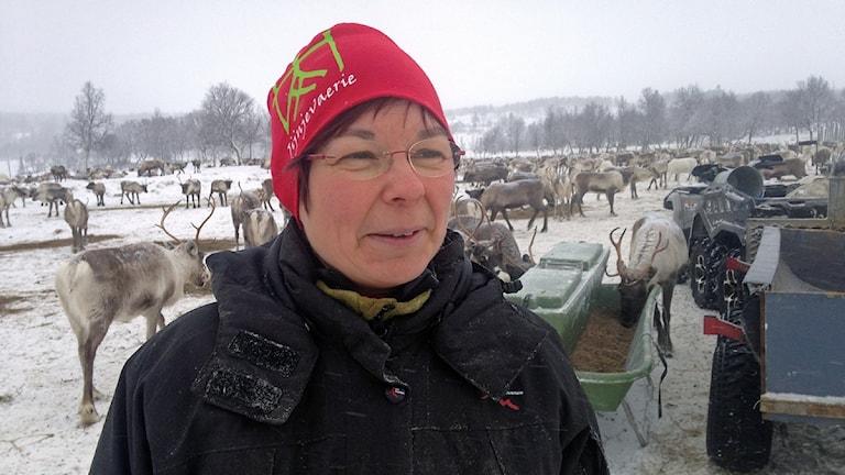 Jijnjevaeries ordförande Marianne Persson. Foto: Inga-Marja Steinfjell/Sameradion & SVT Sápmi