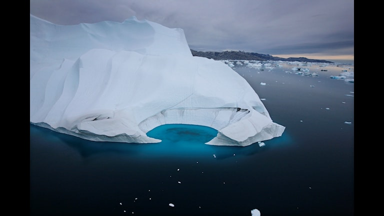 Regeringen uppger att den vill stärka sitt arbete för att skydda Arktis natur. Arkivbild.  John McConnico/AP/TT