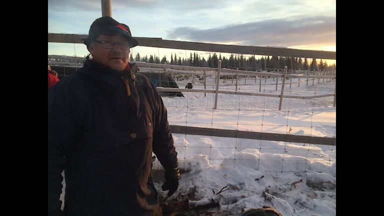 Ingemar Israelsson är ordförande i Svaipa Sameby, som direkt drabbas av gruvetableringen i Nasafjäll på norska sidan av gränsen. Foto: privat