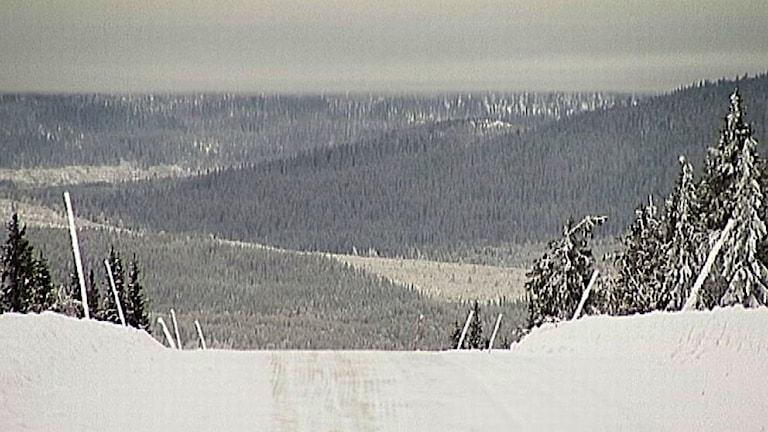 Vy över området Kyrkberget där gruvan planeras. Foto: Arkiv/SVT.