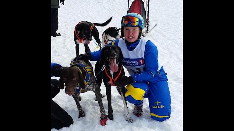 Lina Lanto med hundarna Sarek, Perkele, Power och Tia