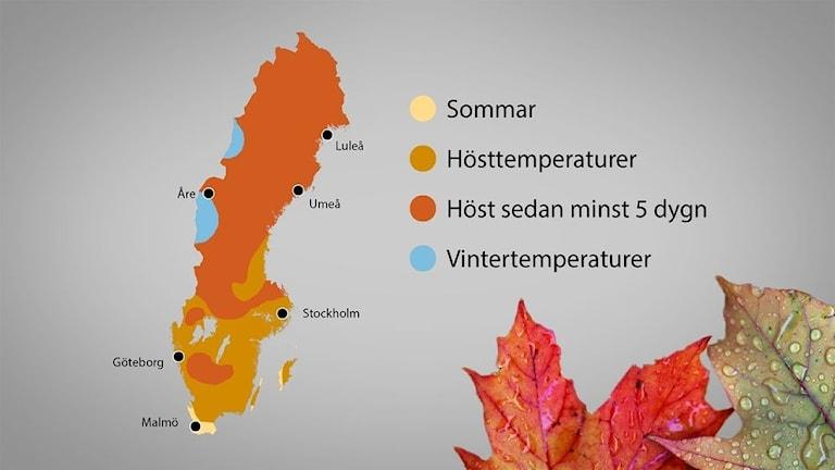 Tre olika årstider i Sveriges just nu.