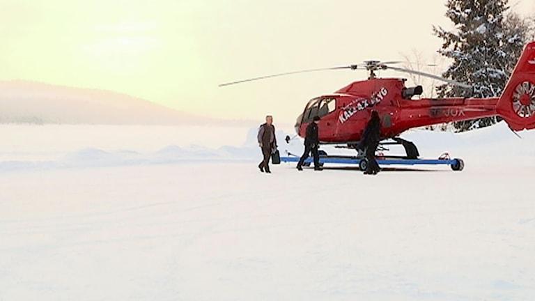 Jägareförbundet flög med helikopter och letade renar i Girjas sameby