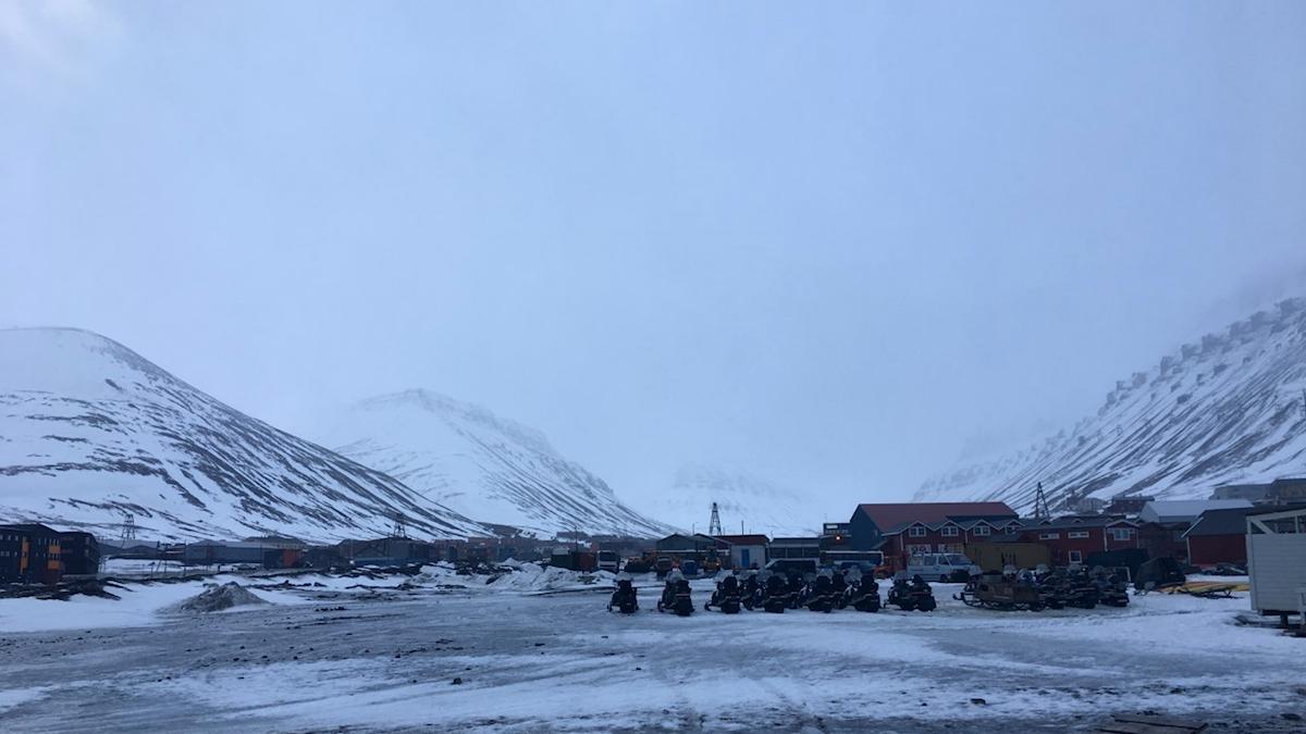 Det har varit ovanligt varmt på Svalbard