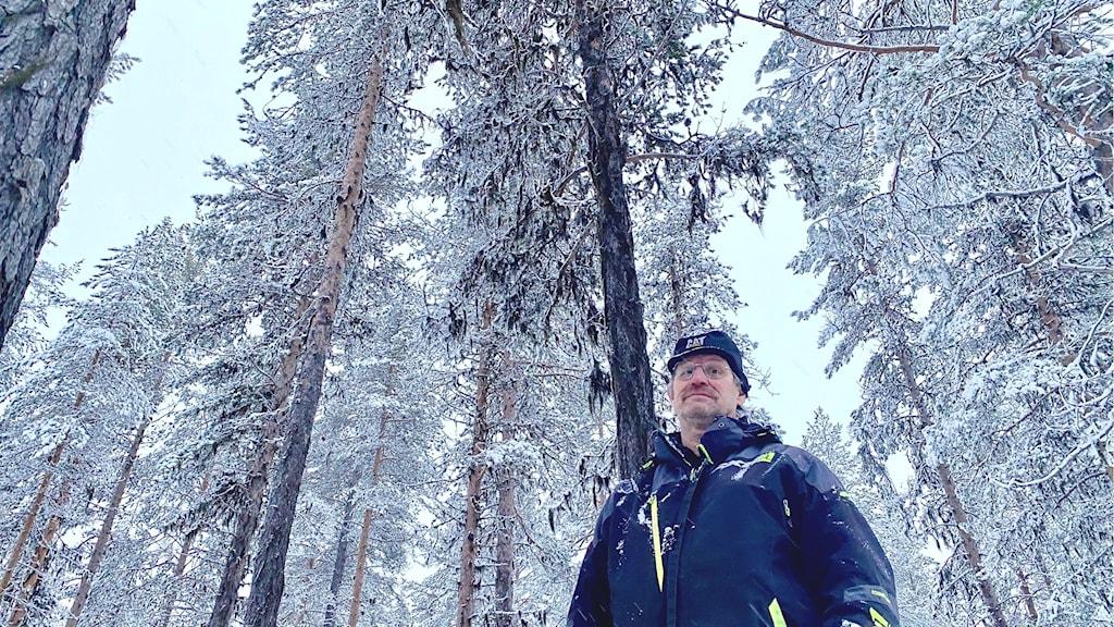 Stig Persson, ordförande Gällivare skogssameby