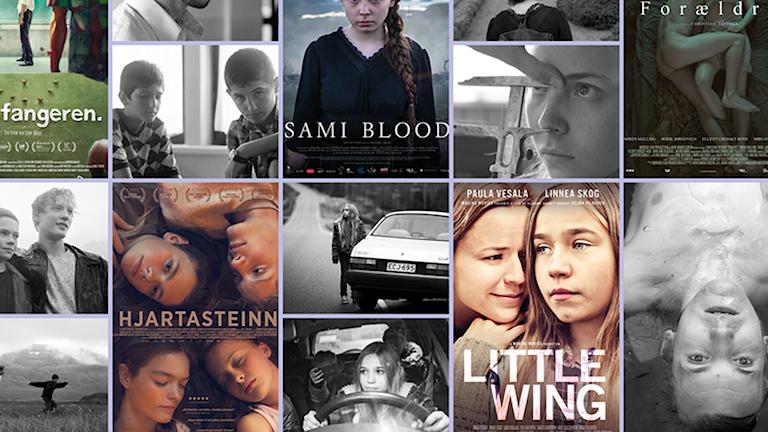 Nordiska rådets filmpris 2017