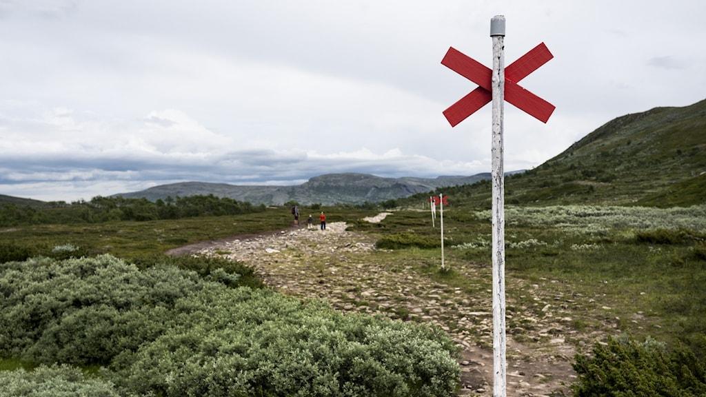 Några personer går på en vandringsled i svenska fjällen sommartid