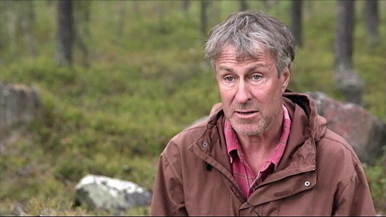 Peter Segerström, björnforskare