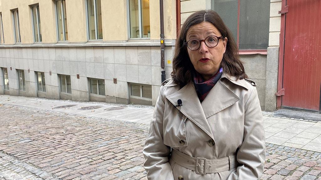 Utbildningsminister Anna Ekström (S), vill att kommunerna också tar ansvar för den samiska integreringen.