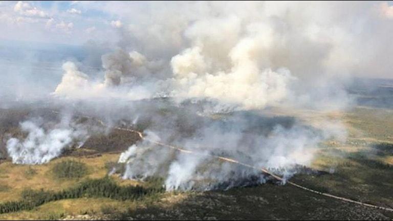 Branden vid Trängslet startade den tolfte juli efter ett blixtnedslag. Foto Räddningstjänsten.