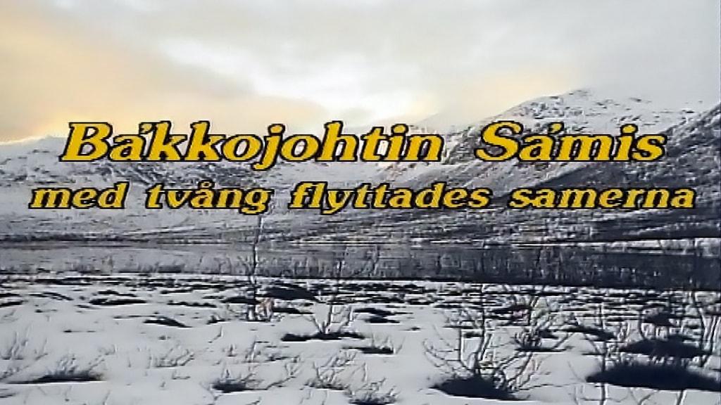 Dokumentären Bakkojohtin samis - med tvång flyttades samerna från 1990