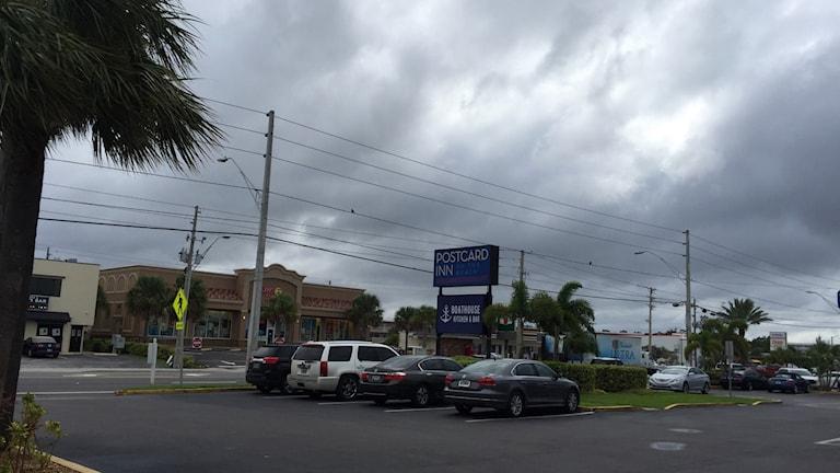 Staden Tampa i Florida