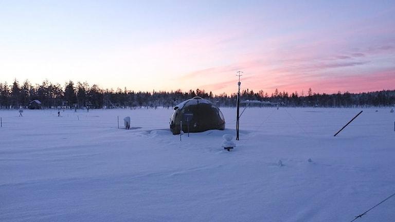 Kvicksilverforskningen har skett på Degerö stormyr i Västerbotten.