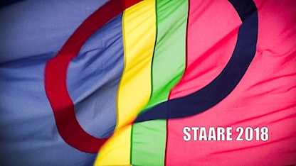 Flagga Staare 2018