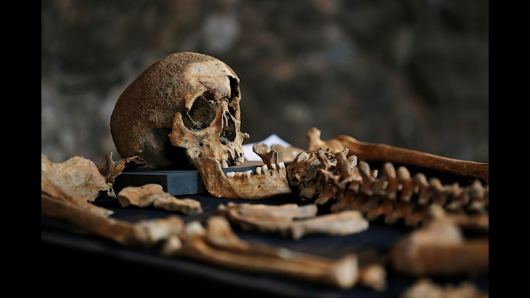 En enkätundersökning som besvarades av 240 svenska museer visade att minst 66 har mänskliga kvarlevor i sina samlingar. Arkivbild.  Lefteris Pitarakis/AP/TT