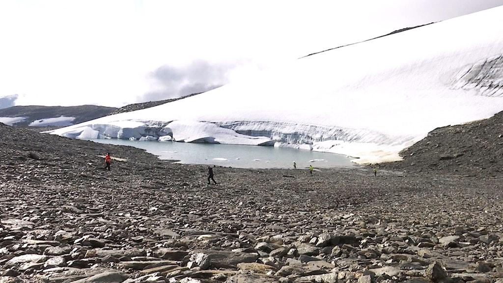 Arkeologer letar efter fynd vid glaciär vid Gohpačohkka nära Björkliden i Kirunafjällen.