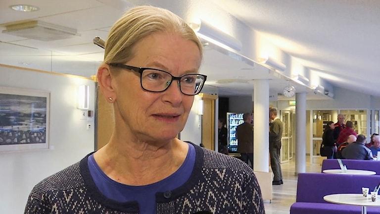 Girjasmålet: JK Anna Skarhed vid hovrättsförhandlingarna i Umeå