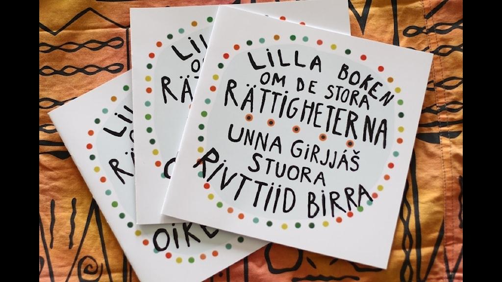 """Barnboken """"Lilla boken om de stora rättigheterna"""" skriven av Jessica Sandqvist och Frida Aretorn"""