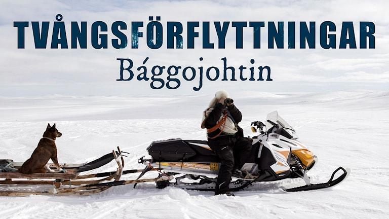 Tvångsförflyttningar - Bággojohtin