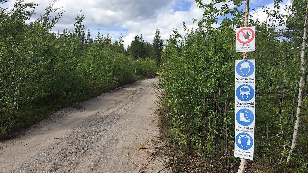Nunasvaara provbrytningsområde av grafit en mil väster om Vittangi vid Torneälven. Foto: Marja Påve/ Sameradion & SVT Sápmi