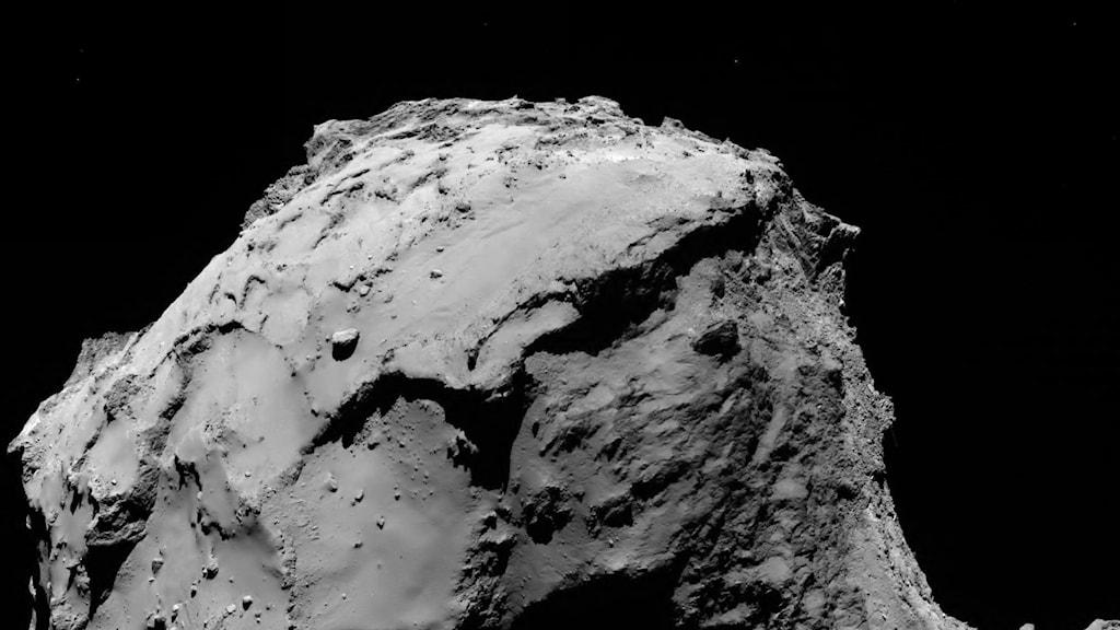 Svartvit bild av en del av kometen.