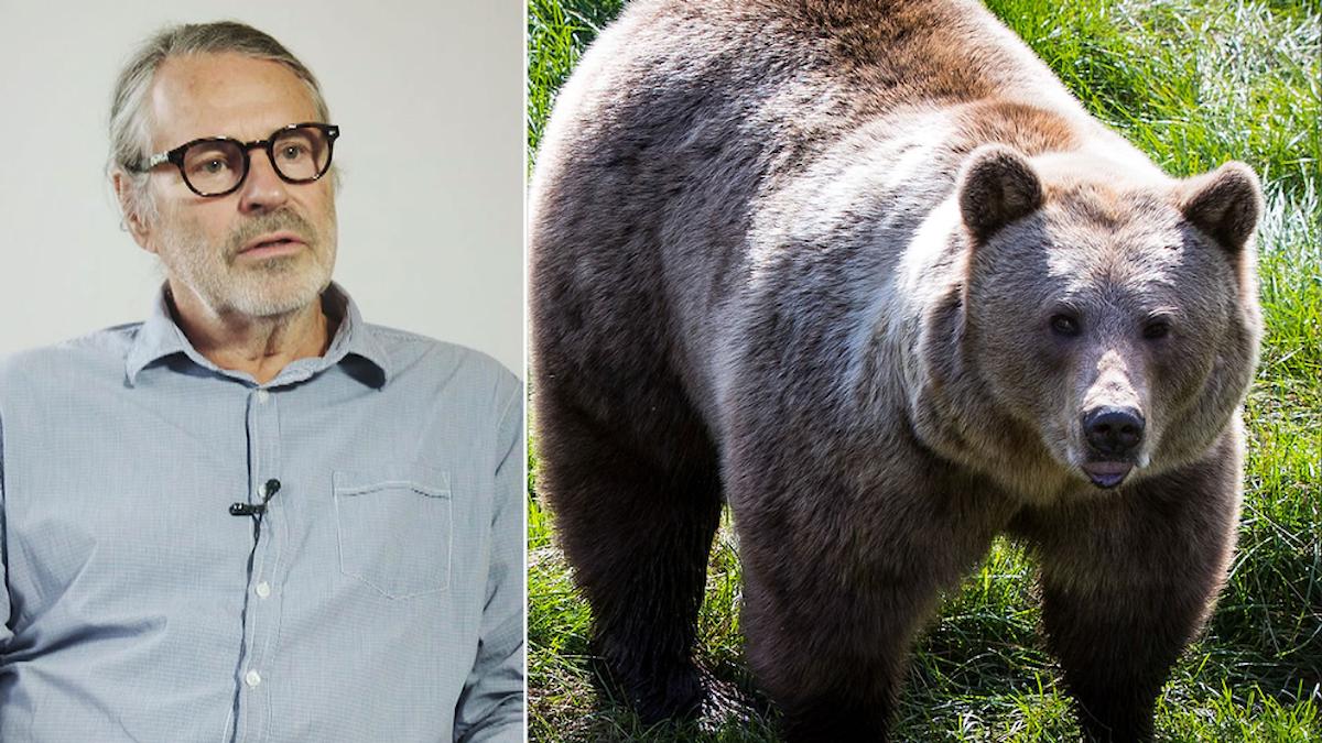 Jan Bergstam, ordförande för Svenska rovdjursföreningen