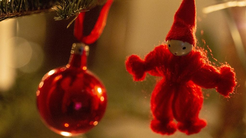 Tomte och röd julgranskula i julgran