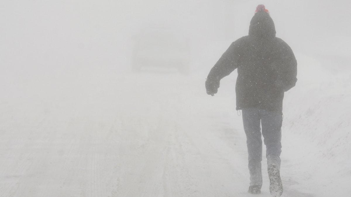 Fotgängare som går i snöstorm