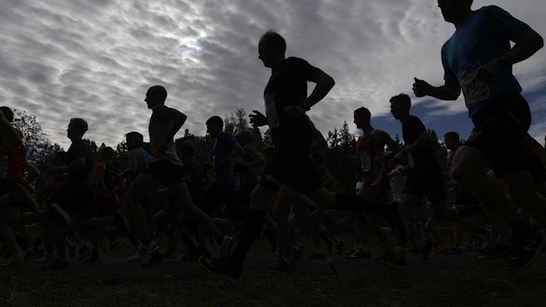 Löpare springer tillsammans i gryningen.