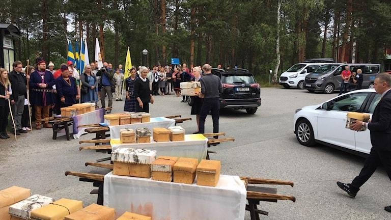 Här kommer näveraskarna som kvarlevorna från de 25-tal samiska individerna ligger i, till gammplatsen i Lycksele.