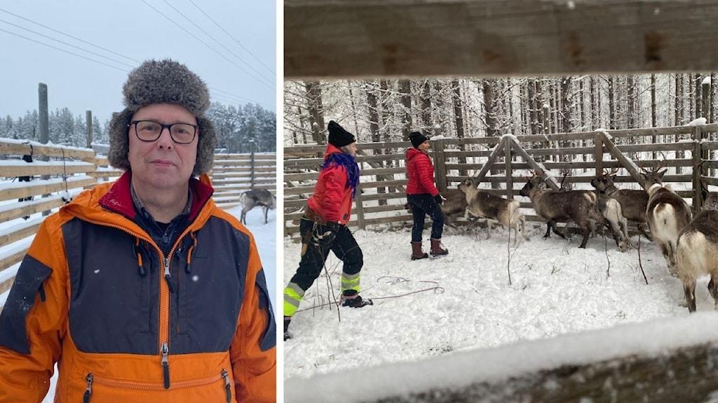 Johny Lantto ordförande i Sattajärvi sameby