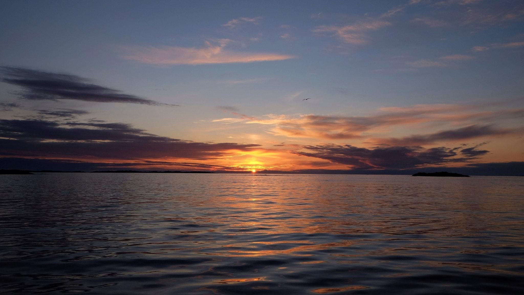 Inspirerad av en solnedgång