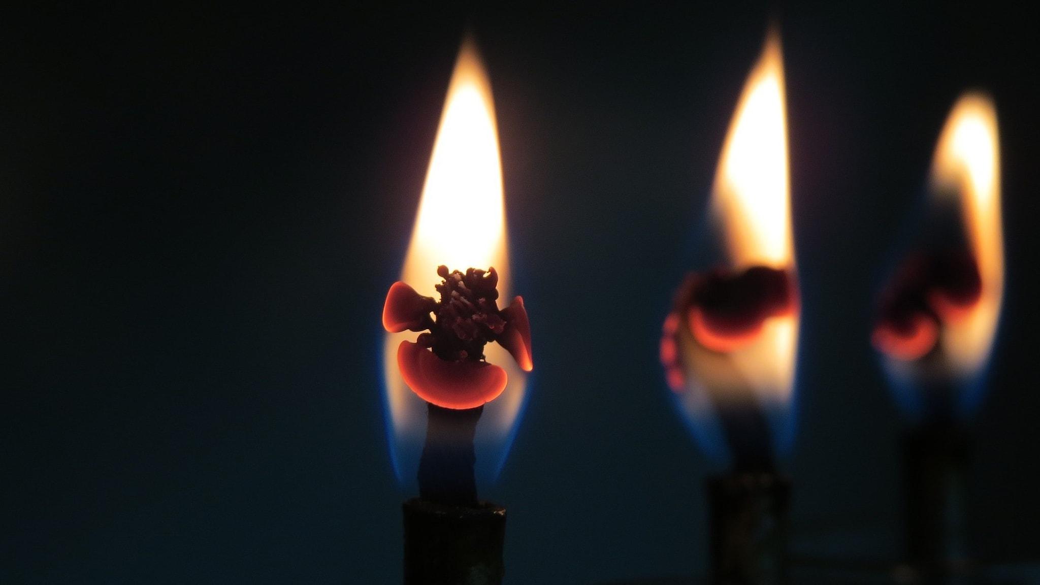Tre ljuslågor