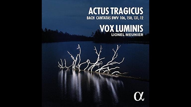 Vox Luminis sjunger Bach-kantater