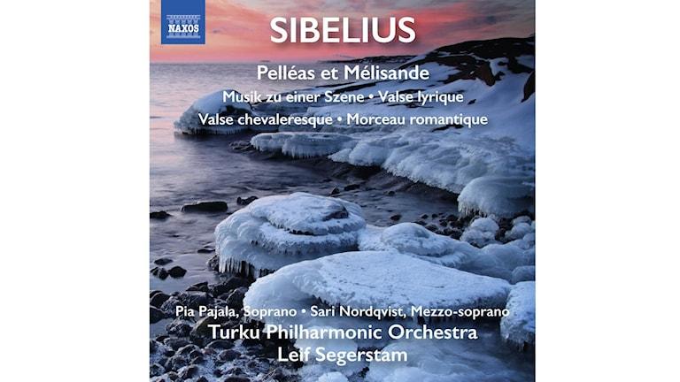 Åbo filharmoniska orkester spelar Sibelius