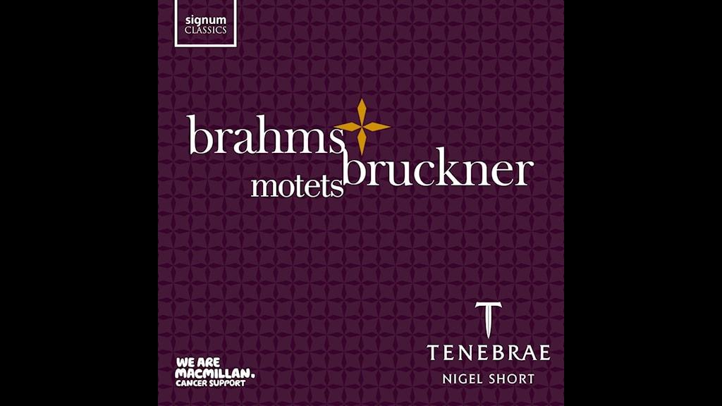 Kören Tenebrae sjunger motetter av Bruckner och Brehms