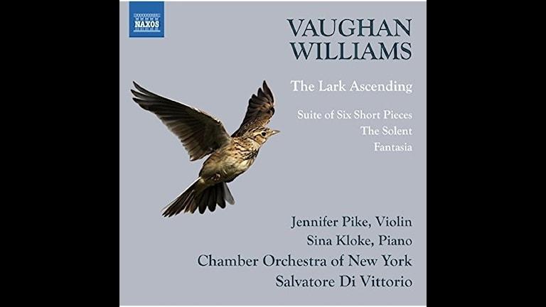 New Yorks kammarorkester spelar Vaughan Williams