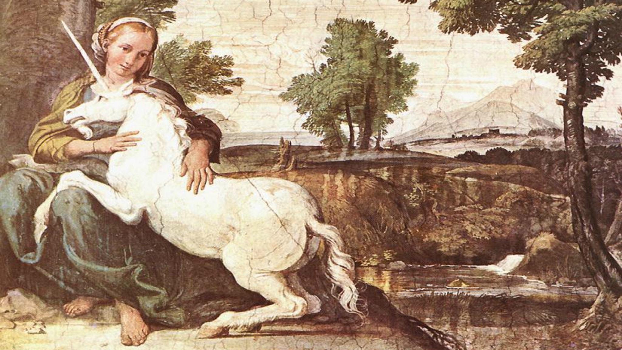 En infångad enhörning läker sina sår med ormgift