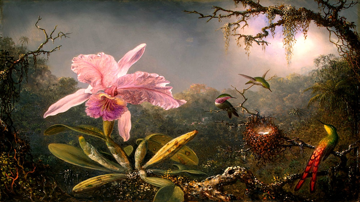 Martin Johnson Heade, 1871