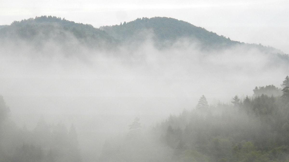 Dimmiga bergen. Bild: Sam Jakobsson/SR