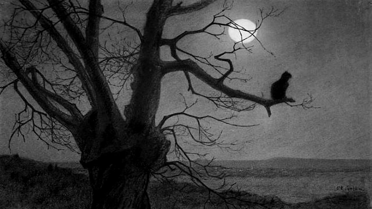 'Katt i månsken'.  Théophile Steinlen (1859-1923)