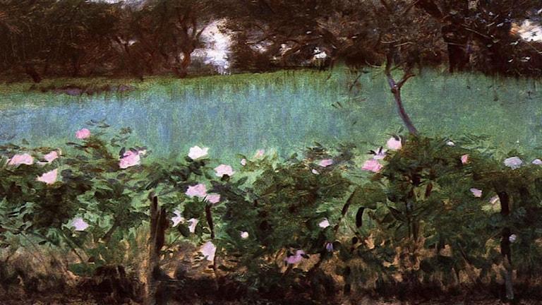 Landscape with Rose Trellis. John Singer Sargent (1886).