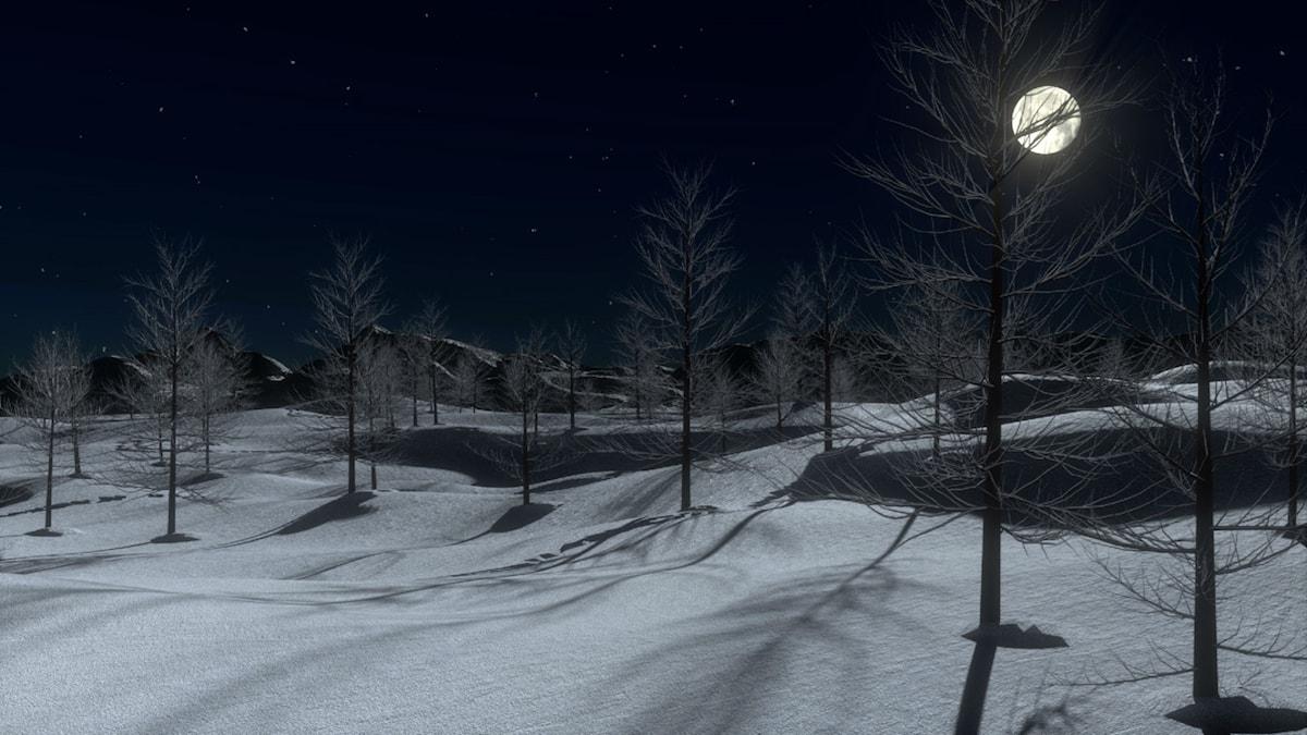 Månsken i vinterlandskap.